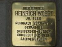 Stein Woest 4